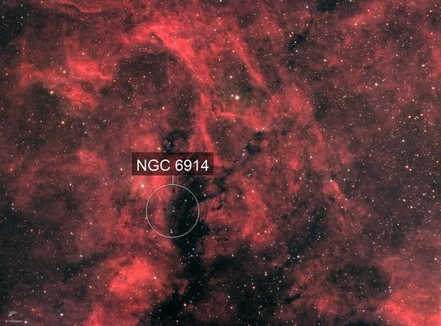 Cygnus field