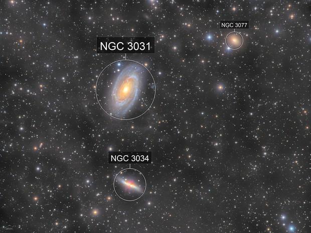 M81, 82 and IFN