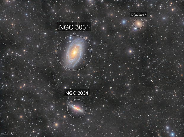 M81, 82 and IFN