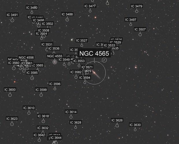 NGC 4565 and Neigbors