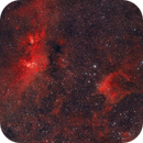 Statue of Liberty Nebula (NGC 3576) and NGC 3572,                                Luiz Ricardo Silveira