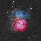 Trifid Nebula,                                stricnine