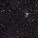 M37,                                Rino