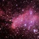 IC 4628 - NEBULOSA DO CAMARÃO,                                Irineu Felippe de Abreu Filho