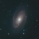 Bode's Galaxy Closeup (M81),                                Scott Denning