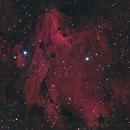 Pelican Nebula,                                yock1960