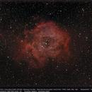 The Rosetta Nebula,                                Dominique Callant