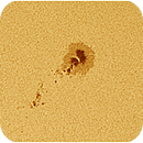 2305 Sunspot Region,                                Marcos González T...