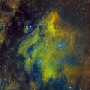 IC5070 - Pelican Nebula - SHO,                                Kyle Pickett