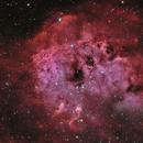IC410 The Tadpoles Nebula Bicolor,                                Ezequiel