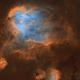 Running Chicken Nebula and little planetary nebula (Starless),                                Trần Hạ