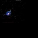 ngc2336 galassia in camelo pardo                                      distanza 20 milioni  A.L.,                                Carlo Colombo