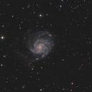 M101,                                Stephane