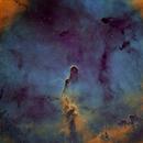 IC1396,                                Bart Delsaert