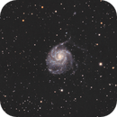 Pinwheel Galaxy - M101,                                Liv4Truth
