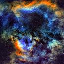 Nebula and open cluster B59/Ced214/LBN589/NGC7762/NGC7822/Sh2-171 (c-sho),                                Ram Samudrala