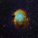 Canada-Sweden collaboration NGC 2174 Monkey Head Nebula,                                Göran Nilsson