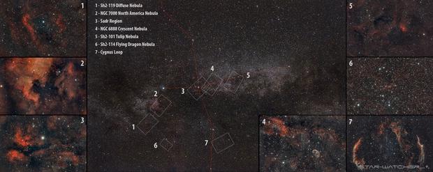 Cygnus Region,                                star-watcher.ch