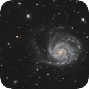M101 and Neighbors,                                Garrett Hubing