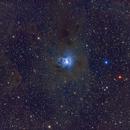 Iris nebula C4/Ced187/Cr429/LBN487/NGC7023/VdB139 widefield (c),                                Ram Samudrala