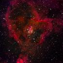 IC1805: Heart of the Heart Nebula,                    orangemaze