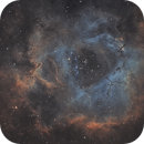 NGC2237 - Rosette nebula,                                Exalastro