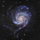 M101 - The PinWheel Galaxy,                                Wissam Ayoub