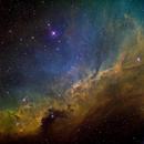 IC2177 Gull Wing,                                John Ebersole