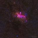Seagull Nebula & Thor's Helmet Widefield,                                David McGarvey