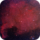 NGC 7000 North America Nebula,                                Richard Pattie