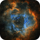 Rosette Nebula  (NGC 2239) Hubble Palette,                                Xx_ATLAS_xX