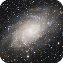 M 33, Triangulum Galaxy, Wide, QHY268C First Light,                                Michael Timm