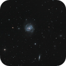 Messier 100,                                Marcus Jungwirth