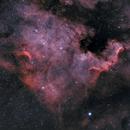 NGC 7000 • North America nebula,                                  Mikael De Ketelaere