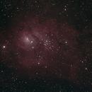 M8 August 2019,                                CrossoverManiac