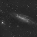 NGC4236,                    Albert van Duin
