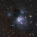 NGC 7129 in Cepheus,                                Nurinniska