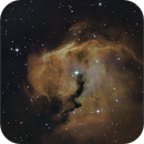 The head of the Seagull Nebula,                                sky-watcher (johny)