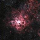 The Tarantula Nebula,                                Niall MacNeill