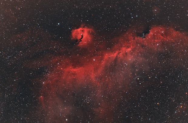 IC 2177 The Seagull Nebula,                                Elmiko