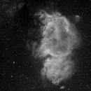 Soul Nebula,                                Greg Watkins