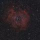 Rosette Nebula,                                Stefano Dini