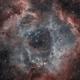 The Rosette Nebula in HOO,                                  Alex Roberts