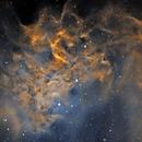 Flaming Star Nebula,                                Rodd Dryfoos