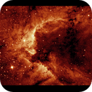 Processing in false color, the Cave Nebula. ONLY  the H-alpha signal. The captures for  50 H-alpha aligned subs. - Mr. Eric Cole,                                  Gabriel - Uranus7