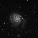 The Pinwheel Galaxy, M101, NGC 5457 (L),                                  Bogdan Jarzyna