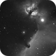 Orion Head horse , flame nebula,                                Al_Zinki