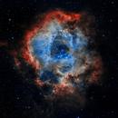 The Rosette Nebula,                                Astro_Time_Traveller