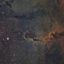 IC 1396 - Elephant Trunk SHO,                                Mike Hislope