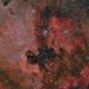 NGC 7000 North America and IC 5070 Pelican ,                                Elio - fotodistel...